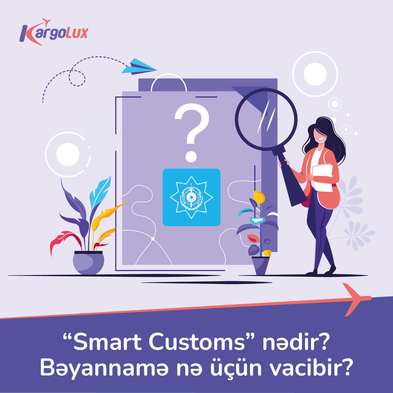 """""""Smart Customs"""" nədir? Bəyannamə nə üçün vacibir?"""
